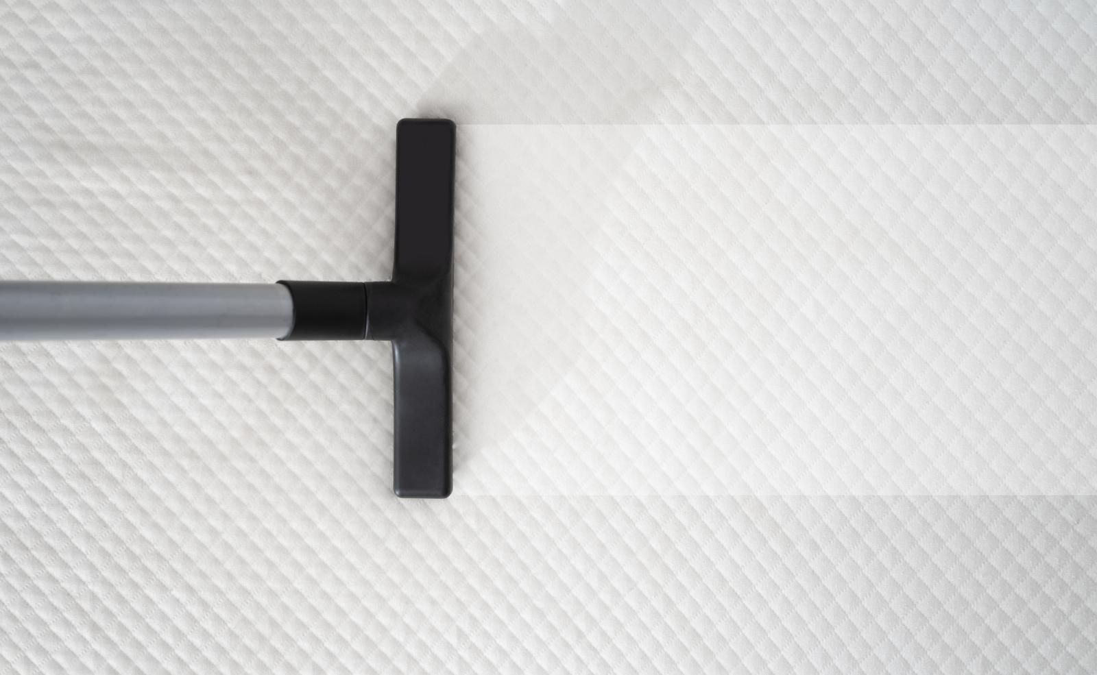 Für gröbere oder großflächige Flächen kann ein Nasssauger verwendet werden.